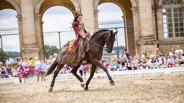beautes-equestres-2-min.jpg