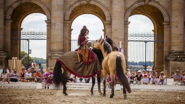 beautes-equestres-3-min.jpg