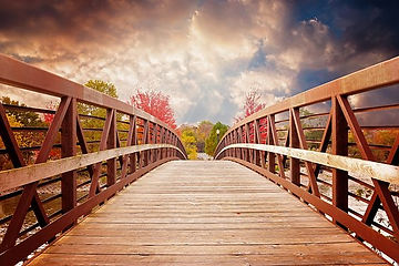 bridge-1385938__340.jpg