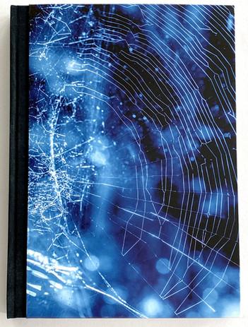 Webs, Isidora Gajic