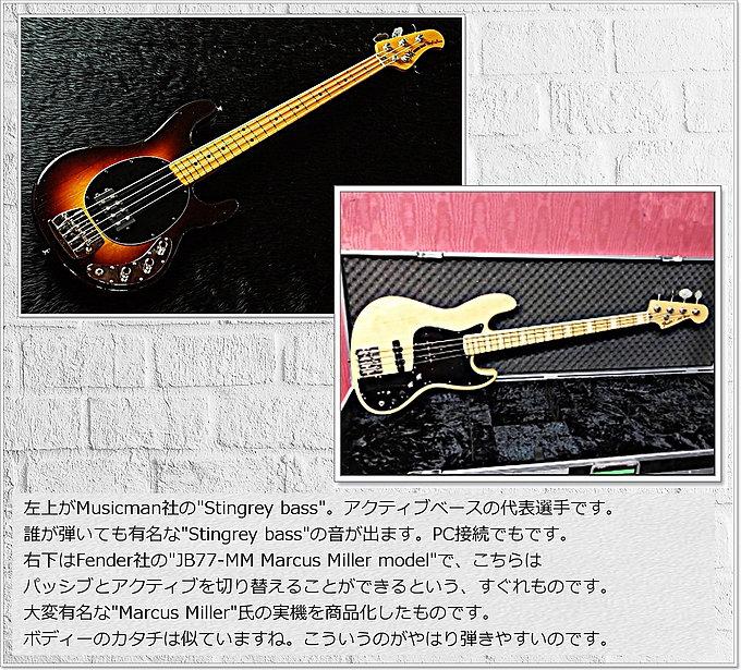 Active Bass 2type_ok_fix.jpg