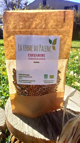 Coriandre graines (coriandrum sativum)