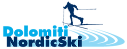 Logo_DNS_transparent.png