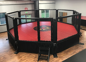 North End Fitness MMA
