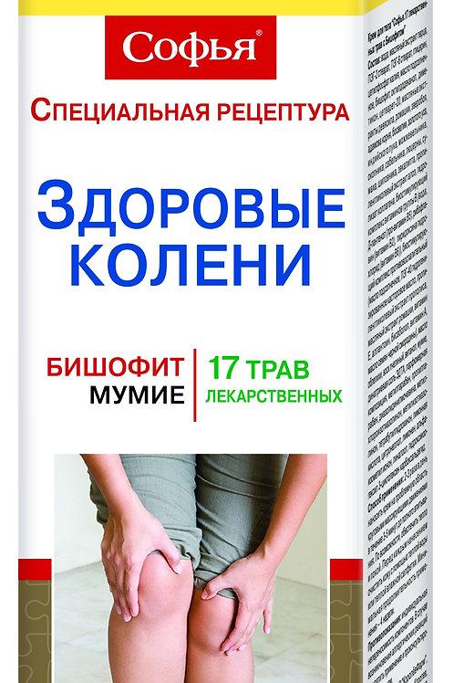 17 лекарственных трав/бишофит Софья Крем для тела, 125мл