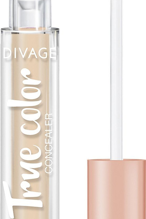Divage Concealer True Color Консилер, для лица, универсальный, тон 02N, 3 мл