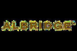 Albridge image for website.png