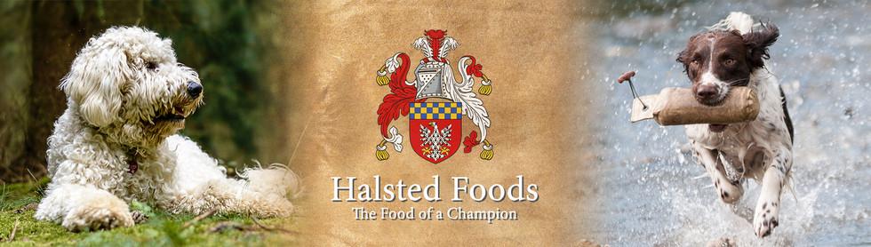 Halstead x.jpg