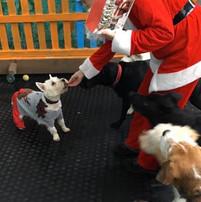 Visit from Santa