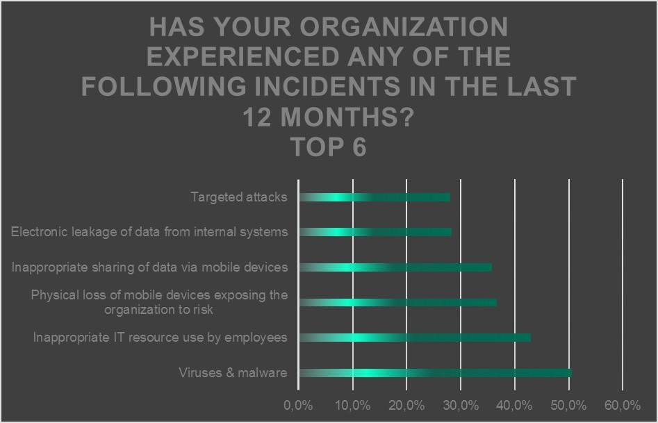 Bilgi Güvenliği, Siber Güvenlik, BT Güvenliği Riskleri Anketi