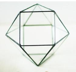 geometrik teraryum 9