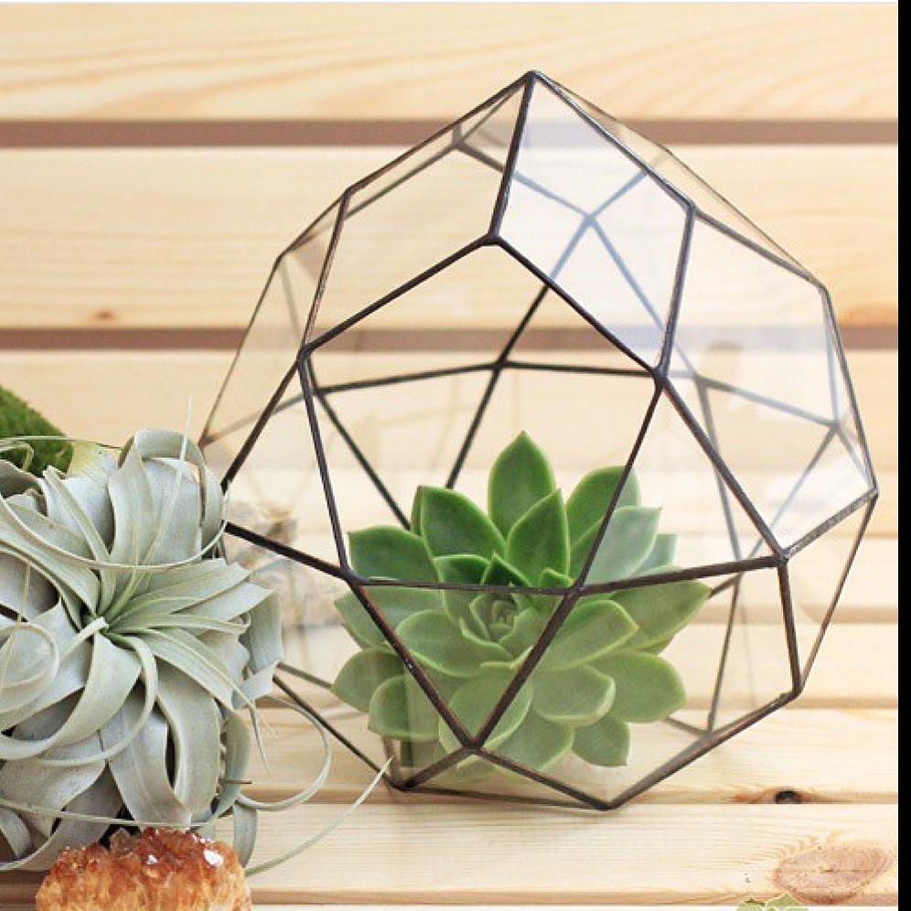 Geometrik teraryum 2