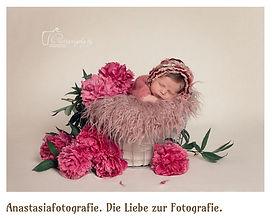 Anastasiafotografie
