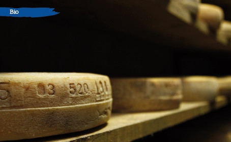 Traçabilité des produits bio – label de qualité pour le consommateur