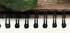 Le radis, un allié santé à bien des égards ... Ami de notre foie et de nos poumons