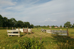 foto landbouw_lt