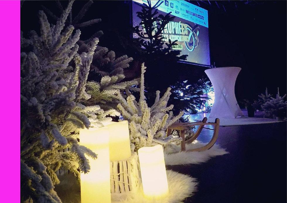 Organisation événementielle remise de trophées erika v agence événementielle créative Loire St Etienne Auvergne rhone alpes Lyon clermont ferrand roanne