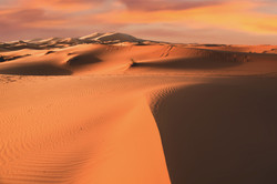 Sahara Desert, Morocco 30