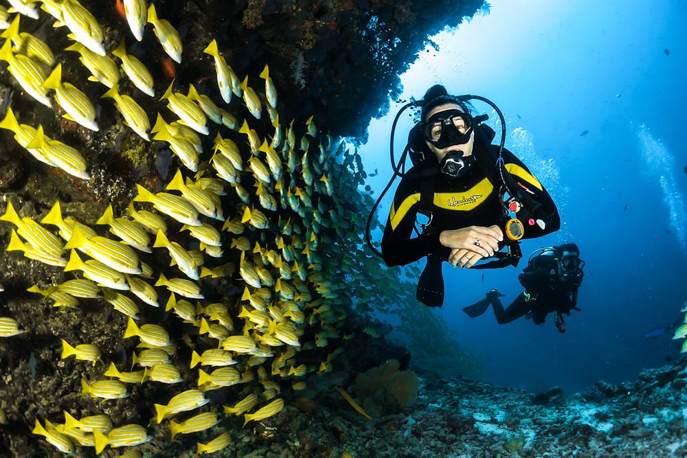 Dive sites Indonesia | Image by Sebastian Pena Lambarri