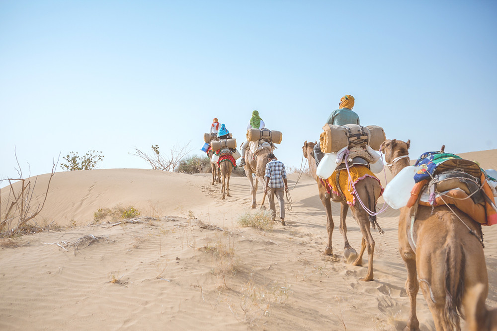 Thar Desert | Jaisalmer | 51 Countries and Counting
