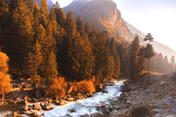 Kashmir, India 12