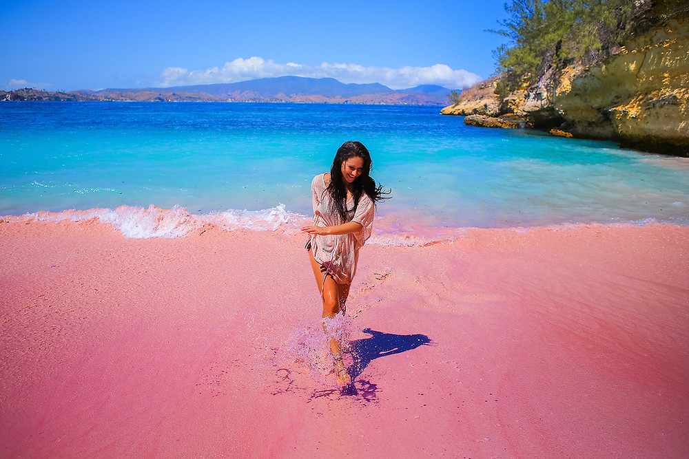 Pink Beaches of Indonesia | Flores Island | 51 Countries and Counting