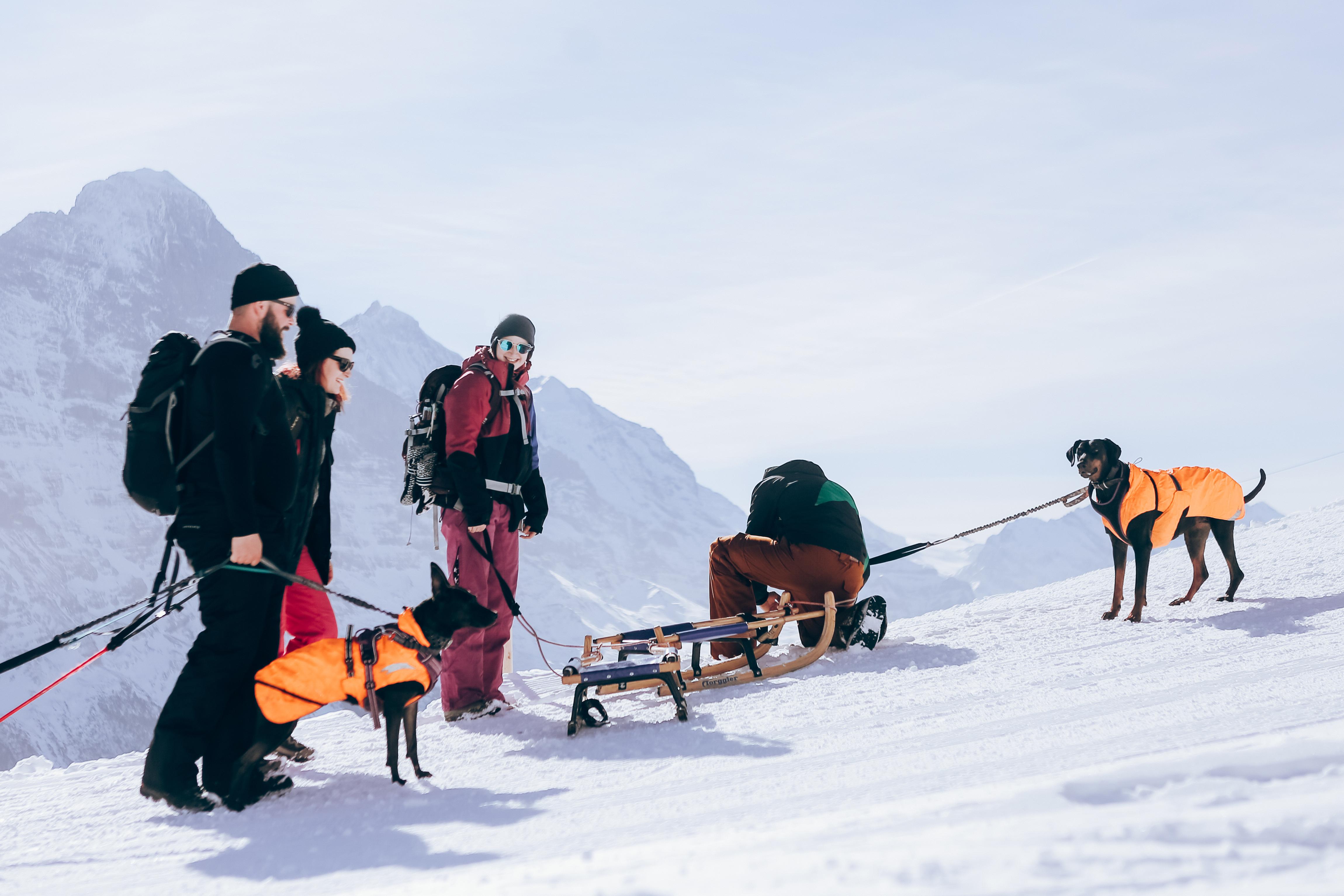 Grindelwald, Jungfrau Ski Region 89