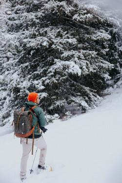 Snowshoeing 33
