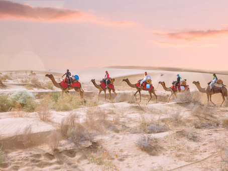 The sheer magic and brilliance of the Thar desert | Jaisalmer, India