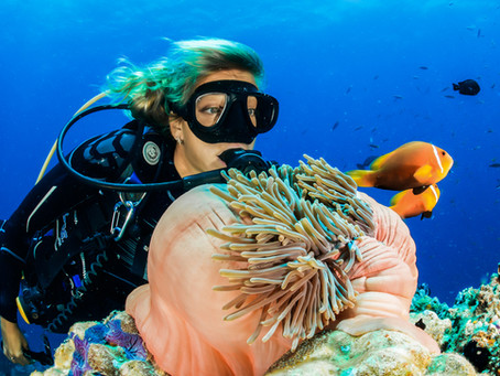 Indonesia's Best Dive Sites & Snorkelling Spots: An Insiders Guide