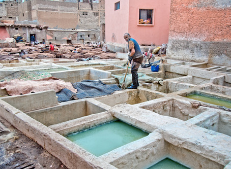 A visit to a traditional Moroccan Tannery {In Photos}