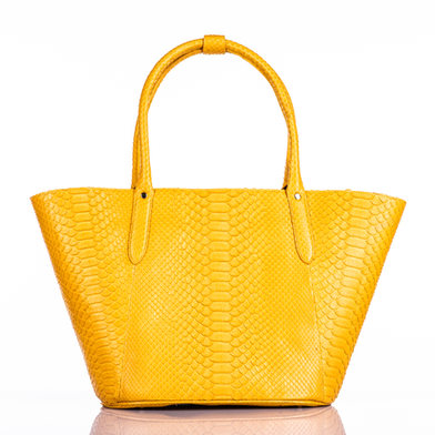 fashionable-woman-s-stylish-bag-isolated