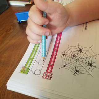 The Basics for Helping Your Reluctant Child Learn at Home.
