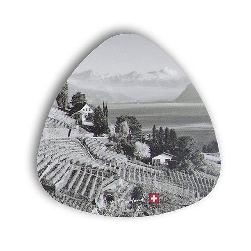 Vineyard coaster