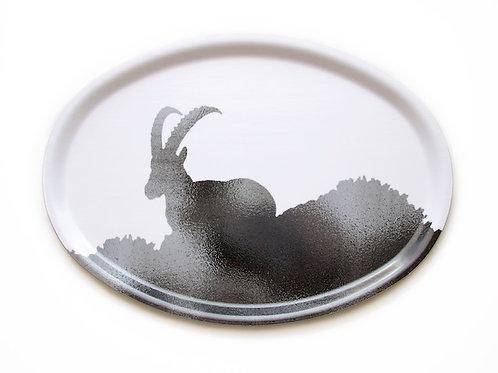 Ibex tray 31x22 cm