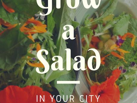5 Min High Vitamin Salad Recipe - Let's Go!