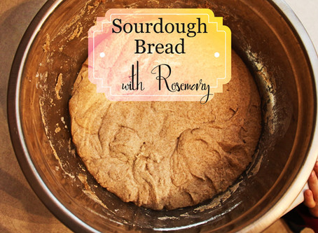 Intro to Sourdough Part 2