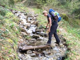 Camino de Santiago Day Six: Gabas to Sallent de Gallego: We Cross The Pyrenees