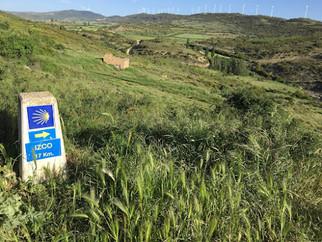 Camino de Santiago Day Fifteen: Monreal to Puente la Reina: Goodbye, Aragones