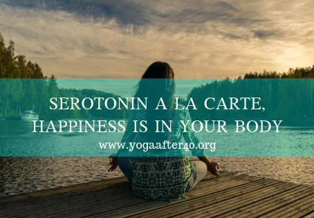 SEROTONIN A LA CARTE, HAPPINESS IS IN YOUR BODY
