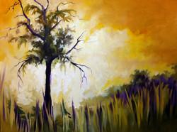 Silhouetted Oak