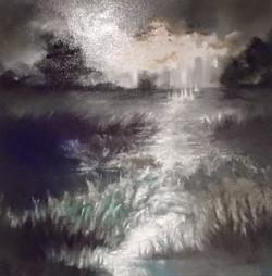 Rain in the Marsh