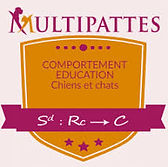 Multipattes Education Canine