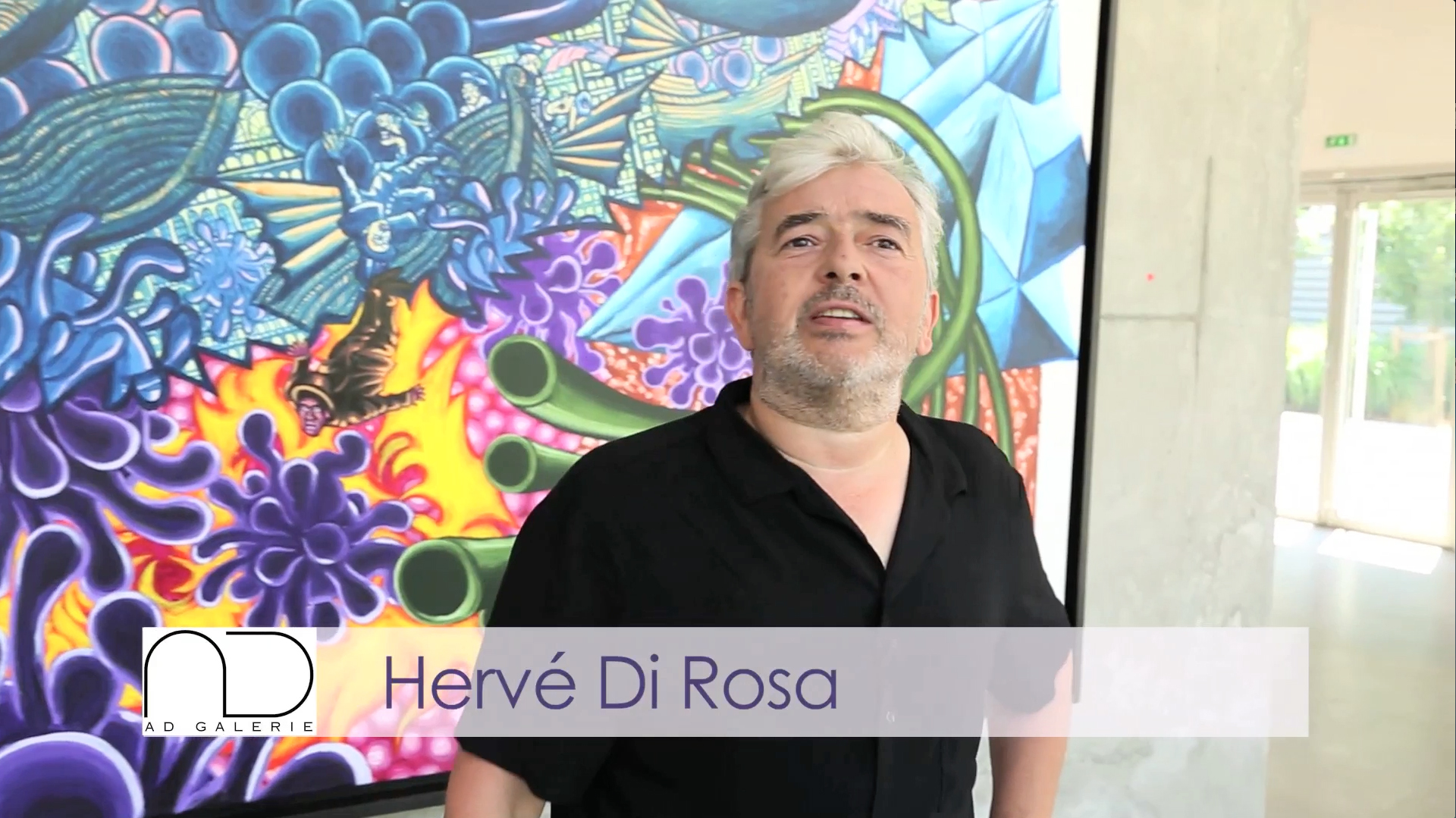 Teaser - Hervé Di Rosa - Interview