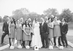 Wedding couple with wedding guests