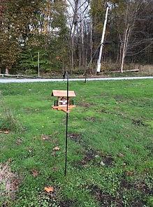 noise monitoring hidden as a bird feeder