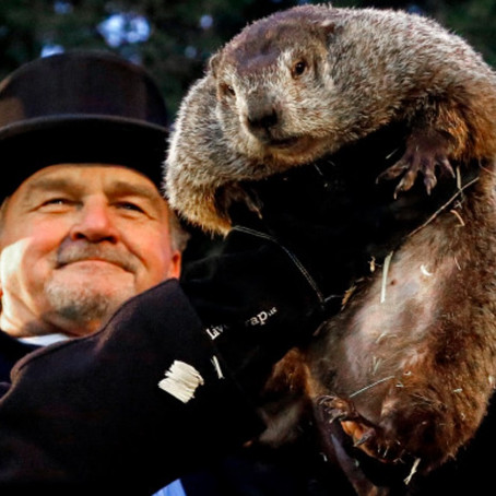 Stuck in a Groundhog Day?