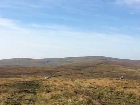 Moor-haunting: A piece about Dartmoor