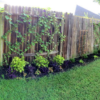 Interum Garden