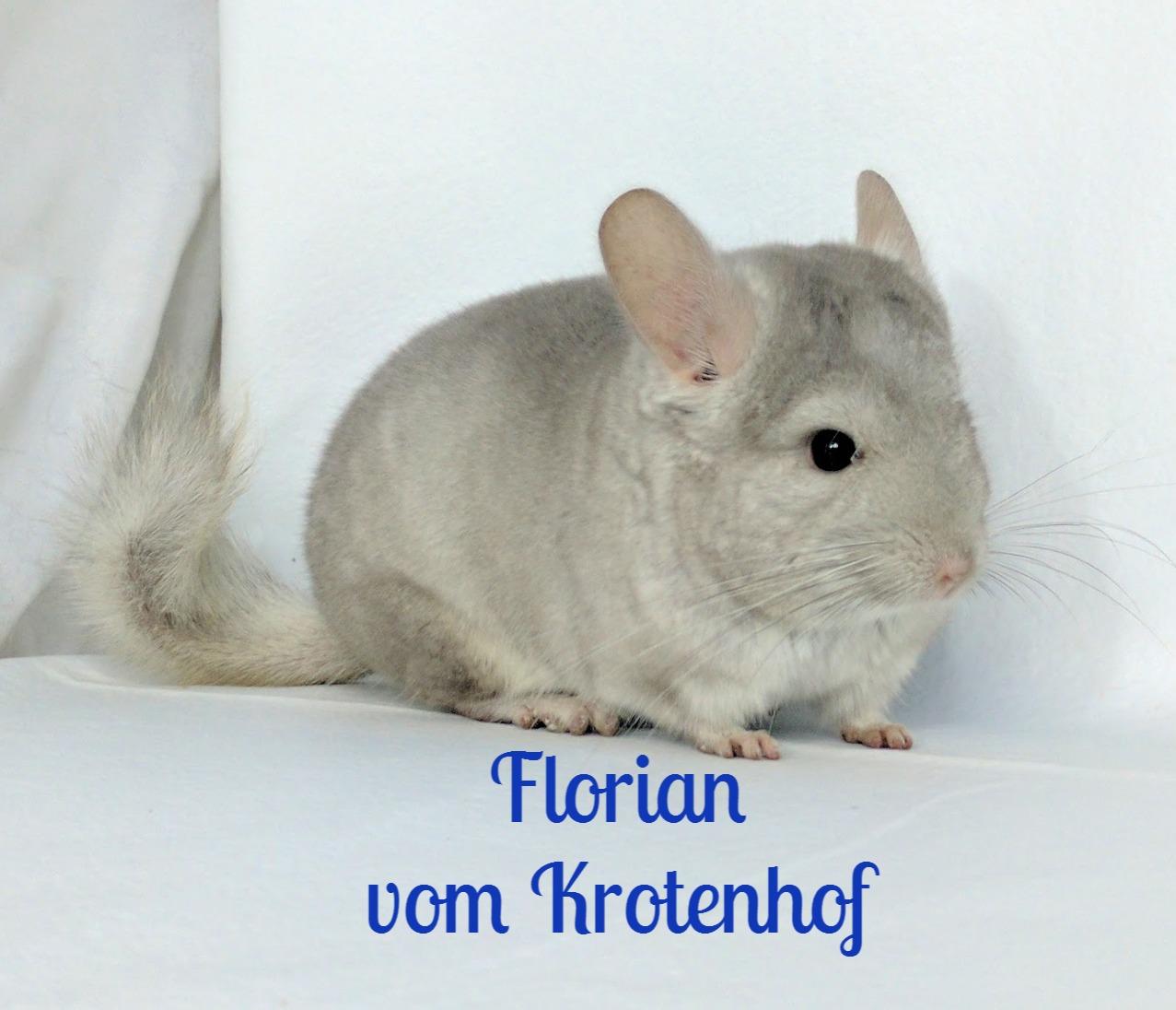 Florian vom Krotenhof